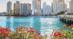 Visita guiada pela cidade de Miami